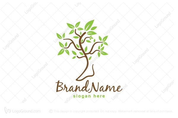 Logo for sale: Orthopedic Physiotherapy Tree Logo