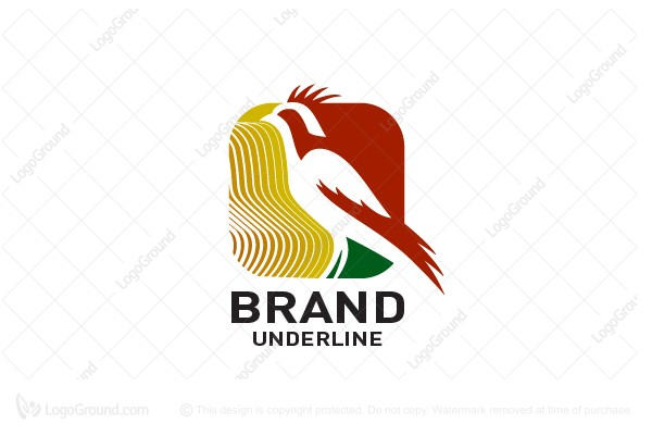 Logo for sale: Tech Bird Logo