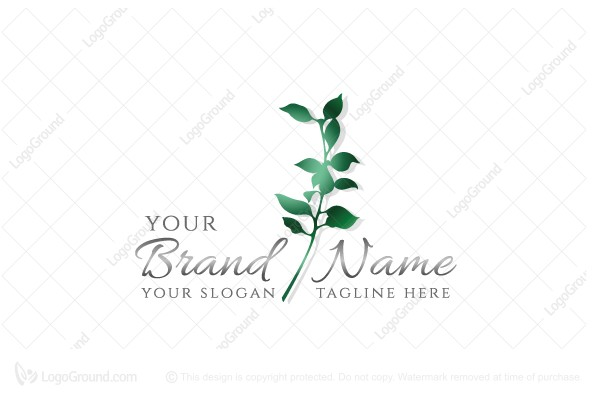 Logo for sale: Elegant Plant Logo