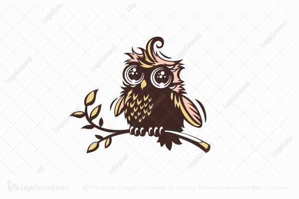 Logo for sale: Little Owly Logo