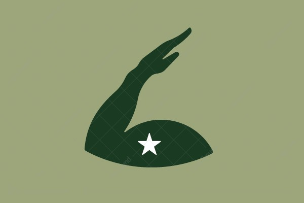 Logo for sale: Hand Salute Logo