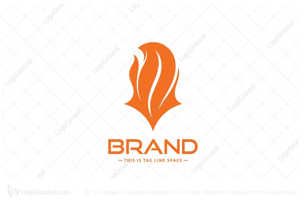Logo for sale: Fox Fire Tail Logo