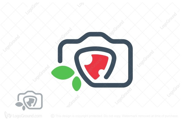 Logo for sale: Strawberry Camera Logo
