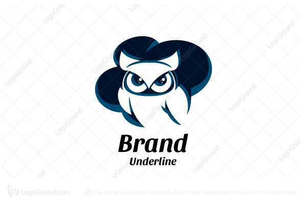 Logo for sale: Owl And Cloud Logo