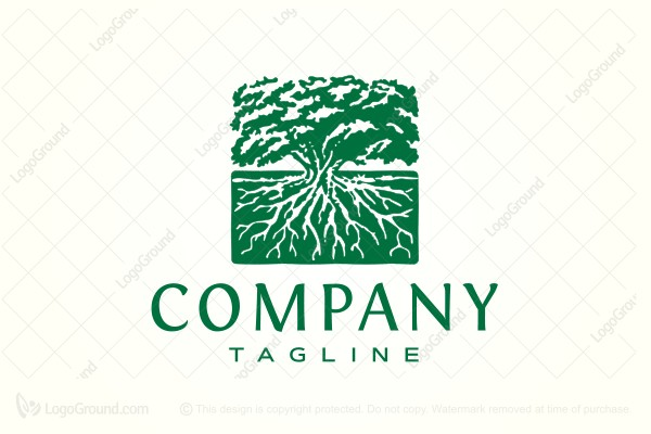 Logo for sale: Square Tree With Roots Logo
