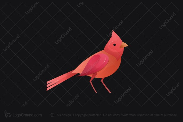 Logo for sale: Cardinal Bird Logo