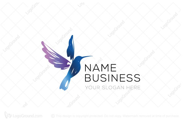 Logo for sale: Hummingbird Drawing Logo