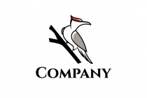 Woodpecker Bird Logo...