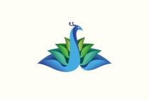 Blooming Peacock Logo