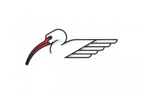 White Ibis Bird Logo
