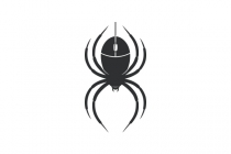 Computing Spider Logo