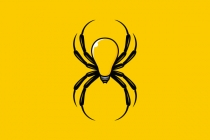 Spider Idea Logo