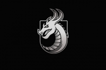 Dragon Shield Logo