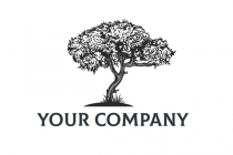Hand Draw Tree Logo