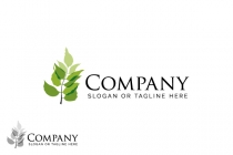 Transparent Leaf Logo