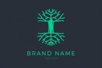 Symmetry Tree Logo