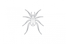 Luxury Spider Logo
