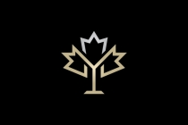 Letter Y Maple Leaf...