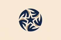 Beautiful Star Logo