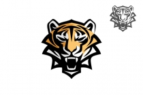 Furious Tiger Logo