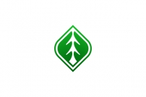 Pine Tree Mark Logo