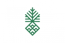 Geometric Palm Logo